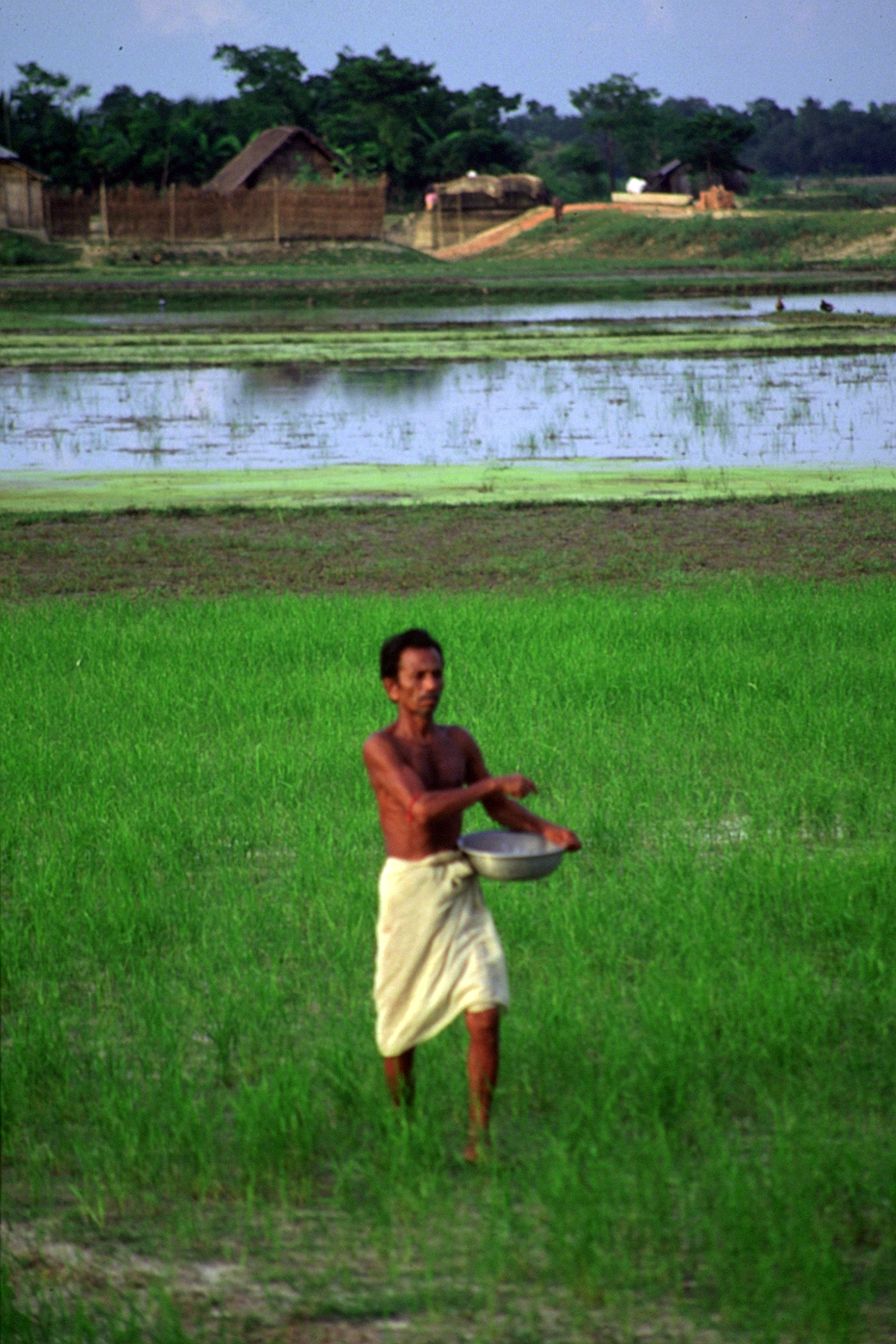 Bangladesh village